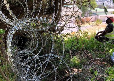 Wire Concertina
