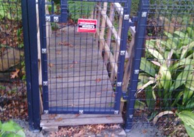 Betafence Nylofor Medium Pedestrian Gate
